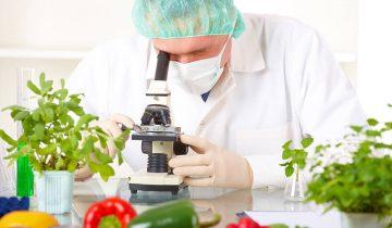 Gıda Mühendisliği Bölümü Ders Notları